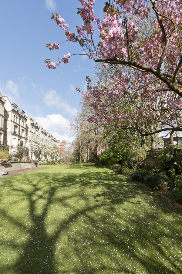 Images for Elm Park Gardens, South Kensington
